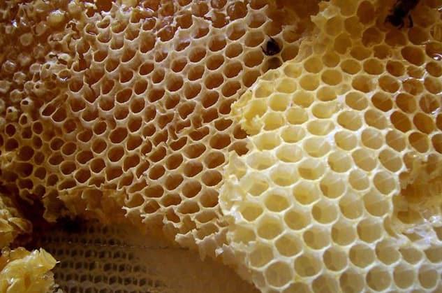 ASMR honeycomb eating – a strangely popular ASMR trigger in 2019